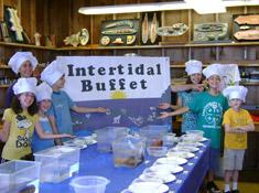 intertidal-buffet