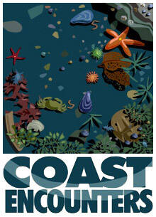 coast-encounter-Animation-1
