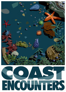 coast-encounter-Animation-2