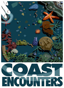 coast-encounter-Animation-8